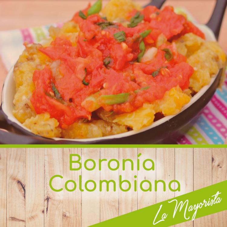 Boronía colombiana